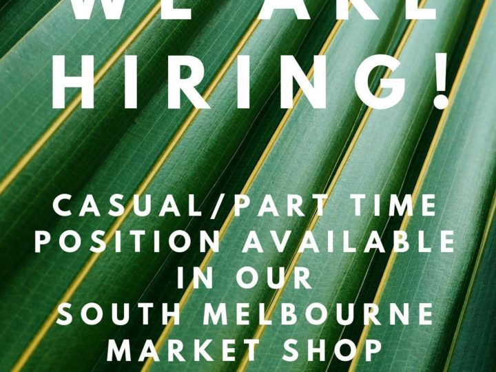 Become a part of Belle Couleur Team! We are hiring!